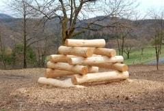 Spielobjekte für Wald, Schule und Spielplatz